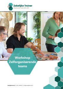 Brochure Design Thinking Training
